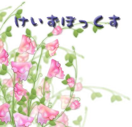 http://www1.u-netsurf.ne.jp/~tommy930/keizubox.jpg
